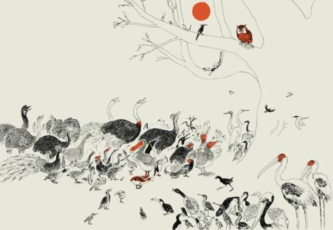roi-des-oiseaux-2