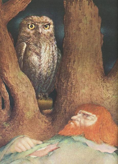 Ludmila Jirinkova owl