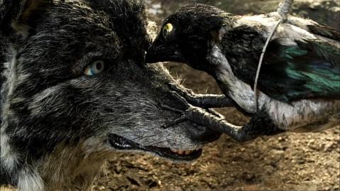 Pierre et le loup Templeton 14