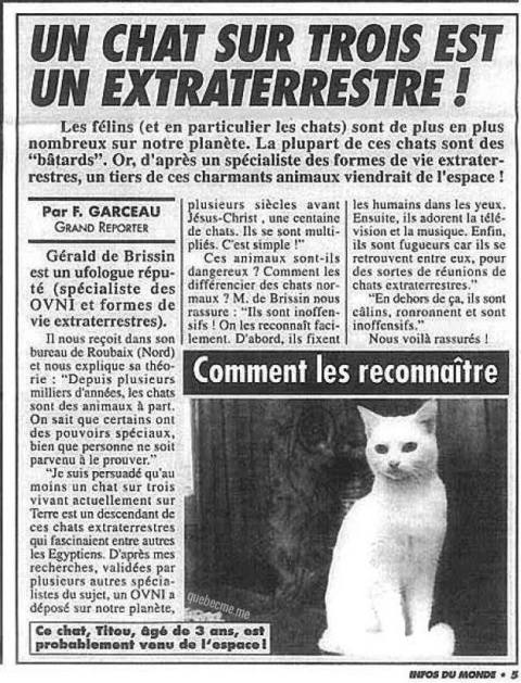 chats complot