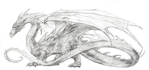 Et si on se fait tatouer un dragon sur l'épaule, on gagne deux vies supplémentaires - super, vu que j'en donnerais bien une à mon cheval qui est mort ce matin, l'andouille.