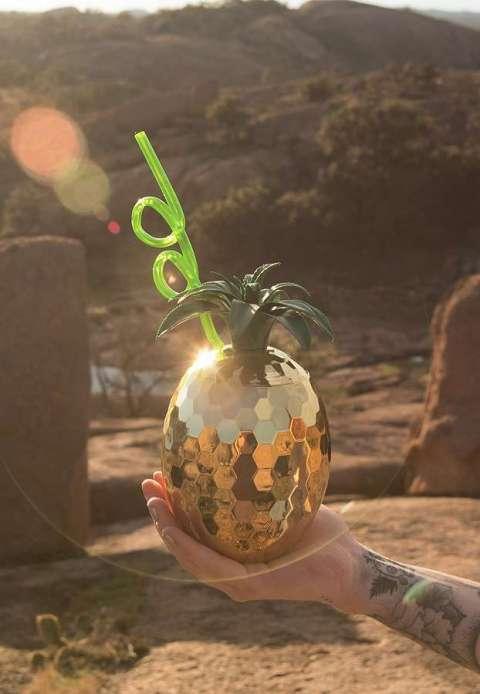 ananas disco